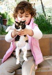 Научите ваших детей правильно обращаться с кошками
