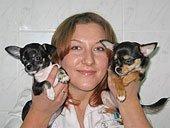 Аутогемотерапия собак и кошек