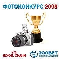 Фотоконкурс 2008 начался!