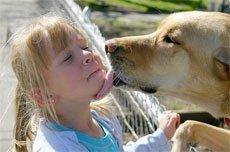 Болезни собак и кошек. Заболевания передающиеся человеку