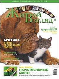 Второй номер журнала «Живой Взгляд»
