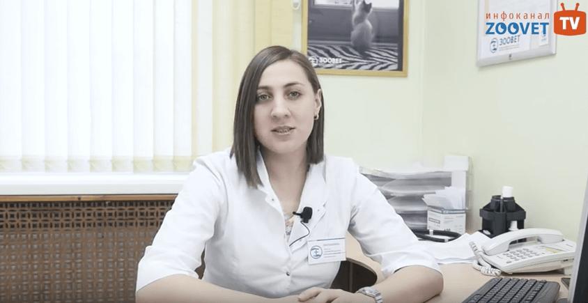 Ветеринарная клиника имени айвэна филлмора стала первым ветеринарным лечебным учреждением в санкт-петербурге