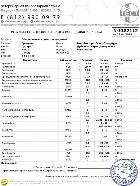 Общий анализ котенок крови на гормоны женщин показатели анализа у
