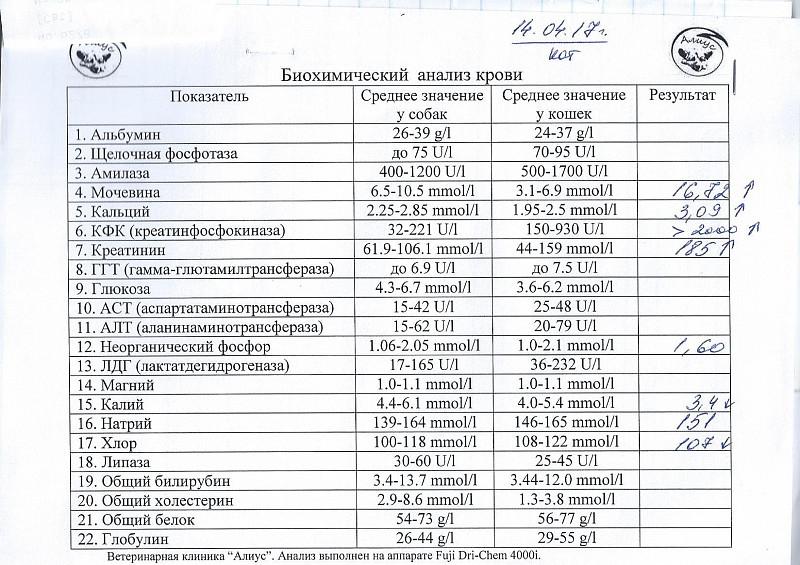 Крови кфк стоимость анализ биохимического взрослых крови алат расшифровка анализа у